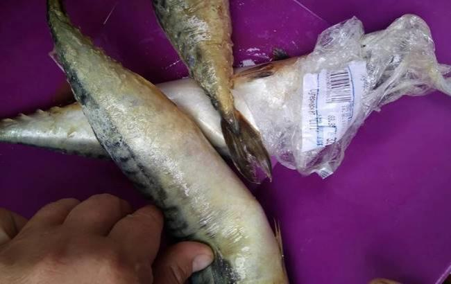 Украинке продали гнилую рыбу (фото: Facebook/Володимир-Волинський SOS)