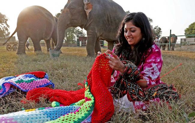 Фото: Одяг для слонів