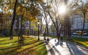 Морозы отошли. В Украину пришло потепление: прогноз погоды на сегодня