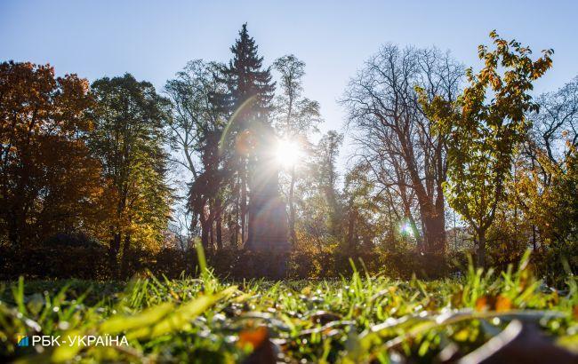 Солнечная погода и ночные заморозки: прогноз на длинные выходные