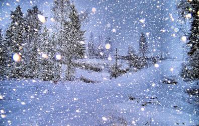 Фото: Снегопад
