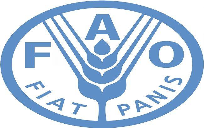 Мировое производство зерна в т.г. превысит 2,5 млрд. тонн - FAO
