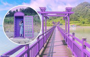 В надежде привлечь туристов: курортный остров полностью окрасили в фиолетовый цвет