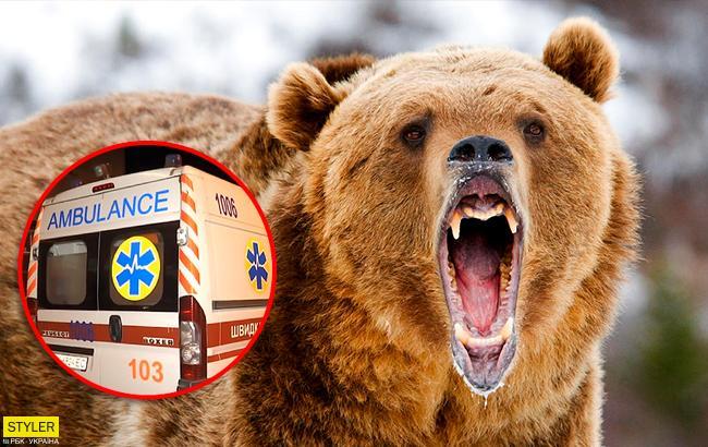 У Харківській області ведмідь накинувся на працівницю бази відпочинку: подробиці інциденту