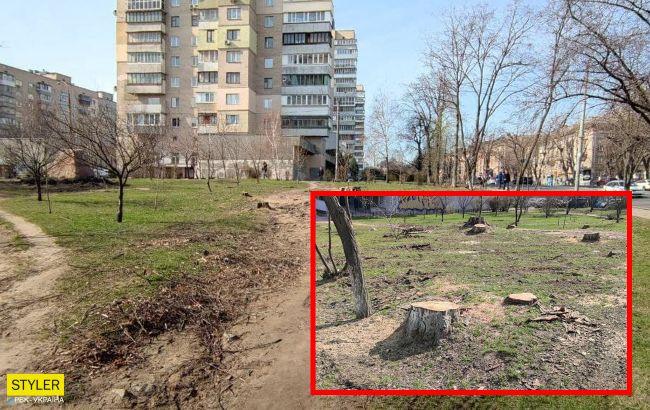 У Києві знищили дерева у сквері, який створили на честь українського розвідника (фото)