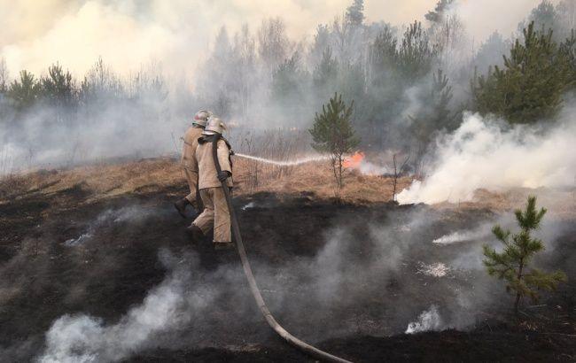 Понад третину лісових пожеж у Житомирській області ліквідували