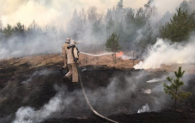 Екологи розробили новий план для боротьби з пожежами в Чорнобильській зоні