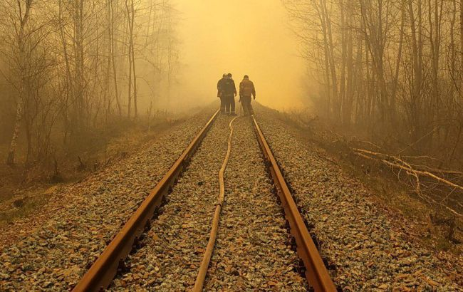 В Кабміні затвердили проект плану заходів для врегулювання проблеми лісових пожеж