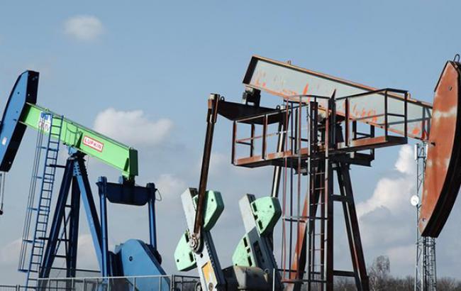 """Суд анулював 19 ліцензій компанії """"сім'ї"""" Януковича на видобуток нафти і газу"""
