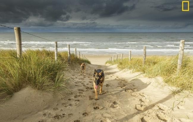 National Geographic назвало лучшие пляжи мира