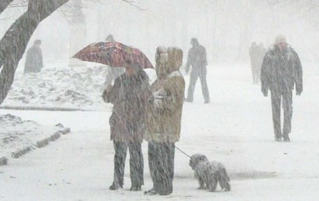 Фото: снегопады в Украине привели к обесточиванию населенных пунктов