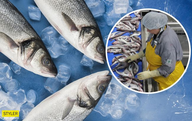 Рыба способна вызвать нервные расстройства: медики бьют тревогу