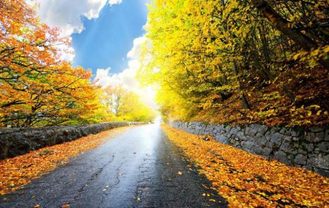Фото: В четверг в Украине будет солнце (WideFon.com)