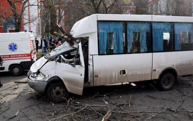 У Миколаєві дерево впало на маршрутку, є постраждалі