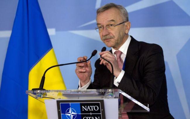 Фото: Долгов сообщил, что Украина и НАТО будут вместе противостоять гибридной войне