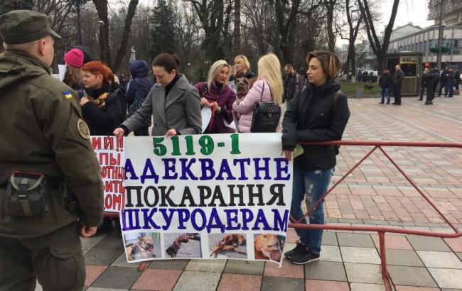 Фото: митинг зоозащитников