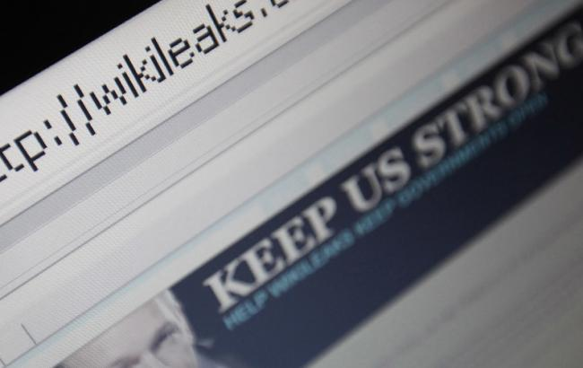 Германия проверит данные WikiLeaks о деятельности ЦРУ в стране