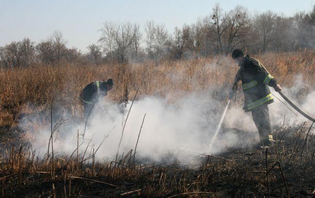 Десятки спасателей гасят торфяной пожар наПолтавщине