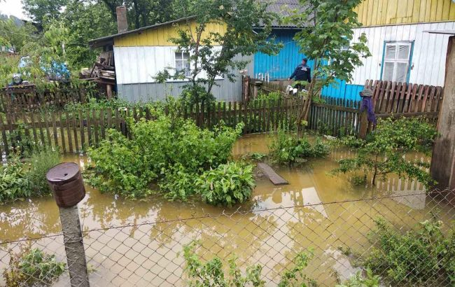 Эксперт назвала причину потопа на Прикарпатье: не только вырубка лесов