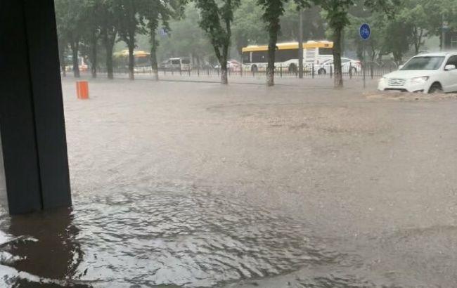 Повалені дерева і затоплені вулиці: у Маріуполі потоп