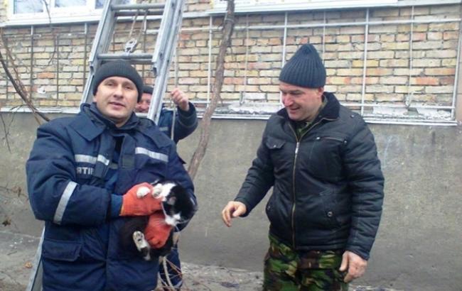 Фото: Рятувальники з котом (vikka.ua)