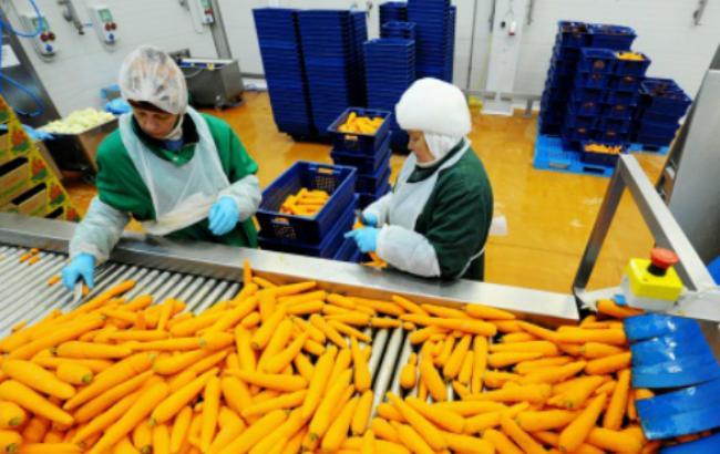 Россільгоспнагляд виявив в РФ 11 тис. т рослинної продукції, поставленої з ЄС в обхід ембарго