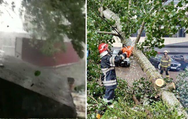 Летали деревья и крыши: под Запорожьем пронесся мощный ураган (видео)
