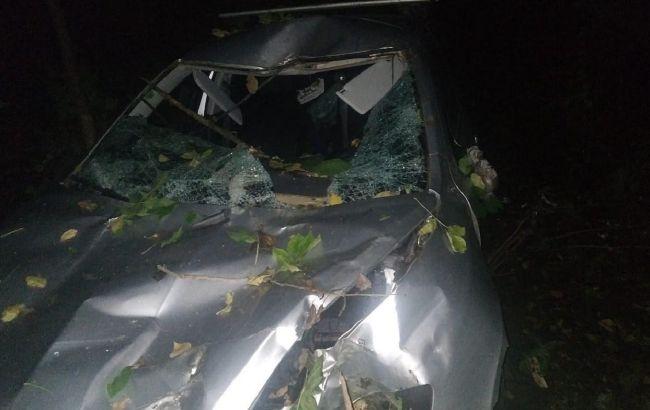 ЧП под Винницей: дерево убило водителя и травмировало пассажира (фото)