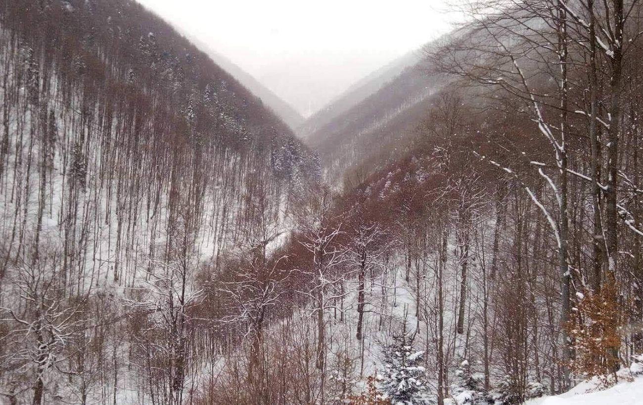 Карпаты накрыл снегопад, а в других регионах шквальный ветер и гроза