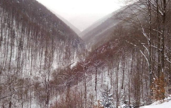 Первый снег в Украине ожидается уже на этой неделе: где именно