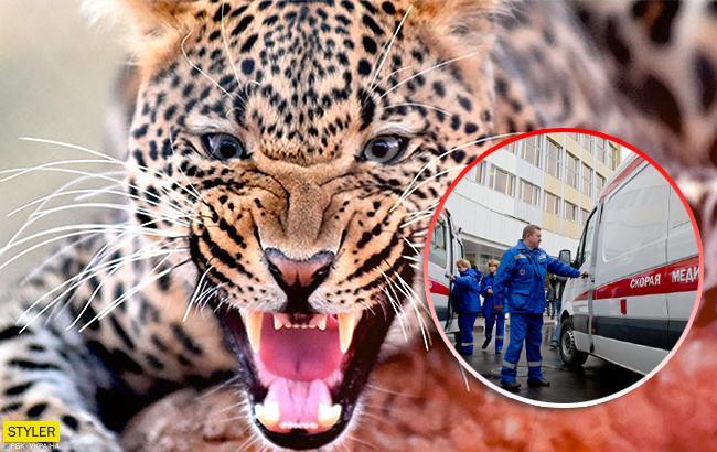 У цирку леопард накинувся на чотирирічну дівчинку