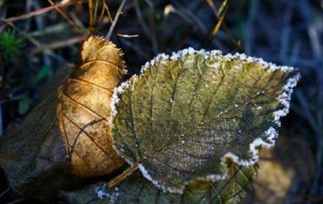 В Україні очікуються перші заморозки: синоптики назвали дату