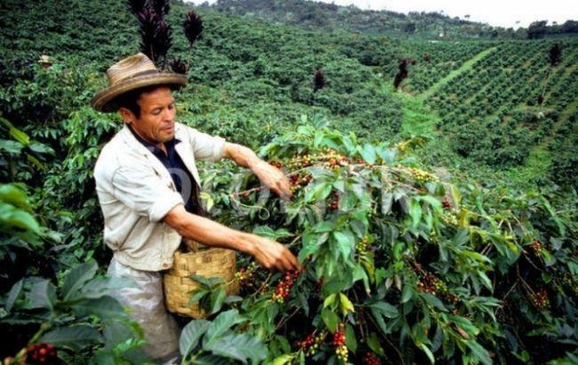 Впервый раз вистории Бразилия будет покупать кофе у иностранных государств