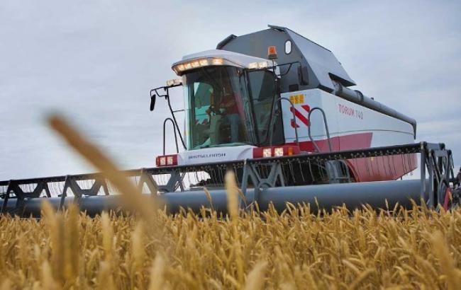 Виробництво зерна в Україні в жовтні зросло на 13,6% - до 57,2 млн т, - Держстат
