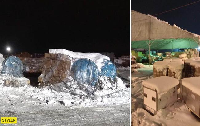 """Кто-то останется без подарков: в """"Борисполе"""" застряли посылки"""