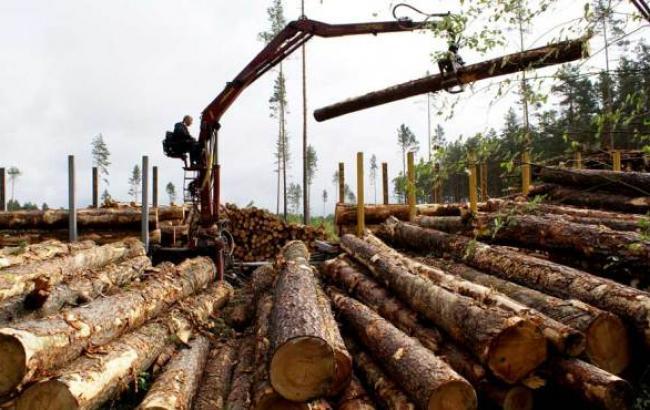 Обращение работников лесной отрасли к председателю Гослесагентства Валерию Чернякову