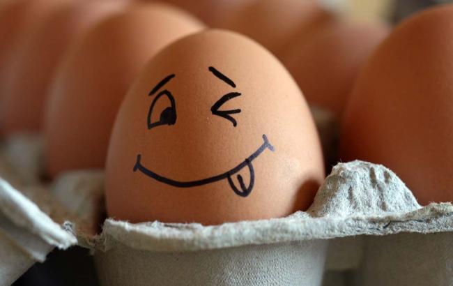 Фото: импорт куриных яиц
