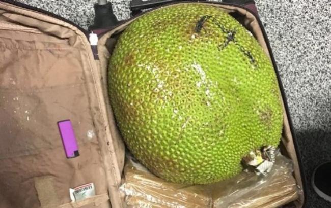 """Екзотичні фрукти в багажі: у аеропорту Борисполя """"завернули"""" в'єтнамця"""