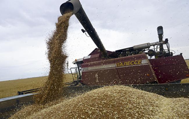 Украина экспортировала почти 20 млн тонн зерна за второе полугодие 2014 г