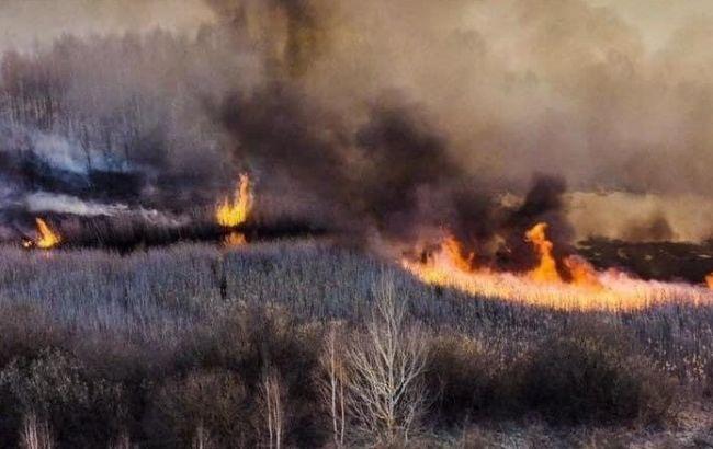У Порошенка вимагають негайно скликати РНБО через екологічну катастрофу