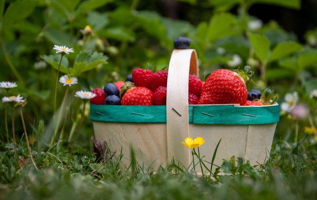 Самая полезная летняя ягода: защитит от рака и сердечных болезней