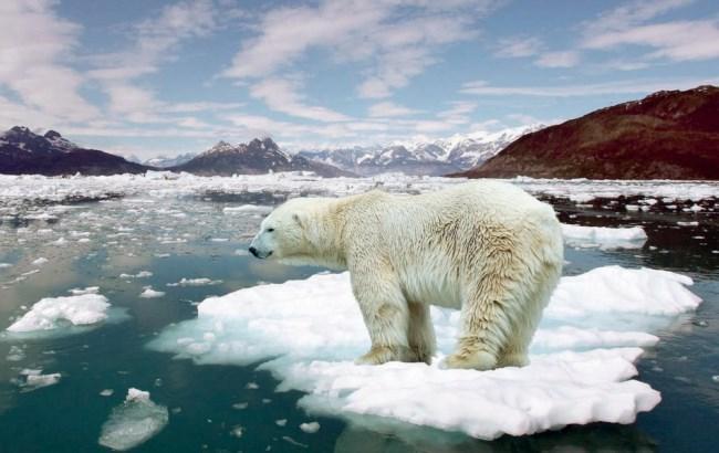 Фото: Глобальне потепління