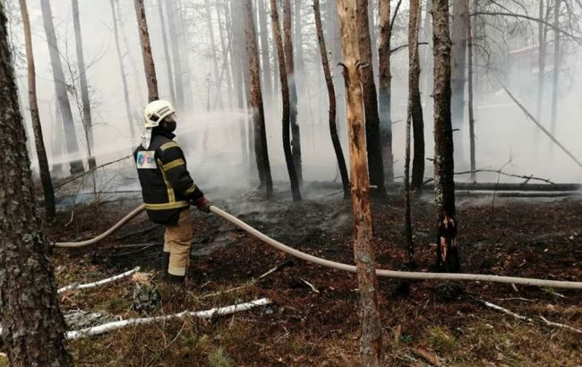 У Чорнобильській зоні ліквідовано один з осередків пожежі