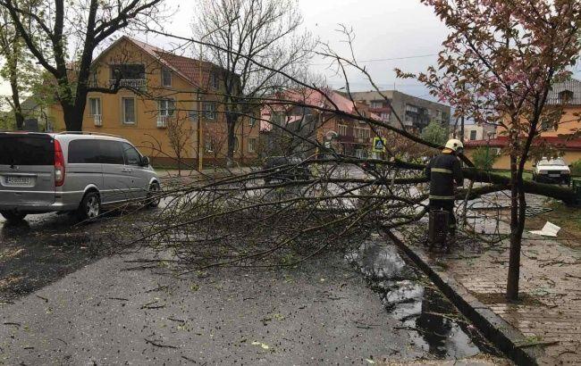 У Закарпатській області через негоду сталося масове знеструмлення