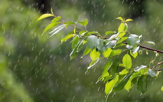 Накриють зливи з грозами: синоптики розповіли про погоду на вихідних