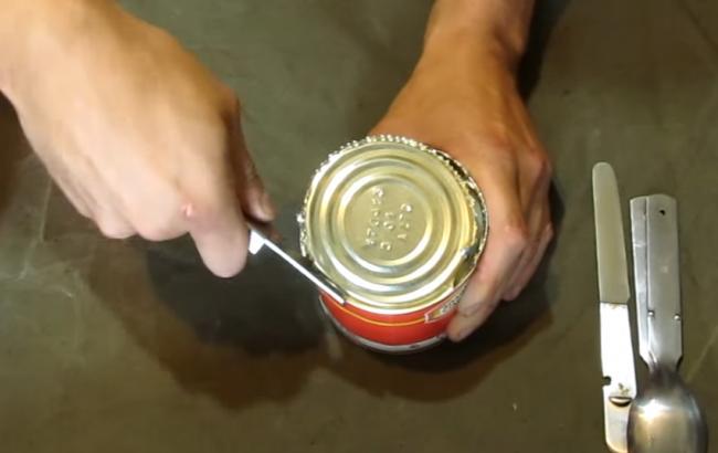 Фото: Тушонка (скріншот з відео youtube.com/paulphinch)