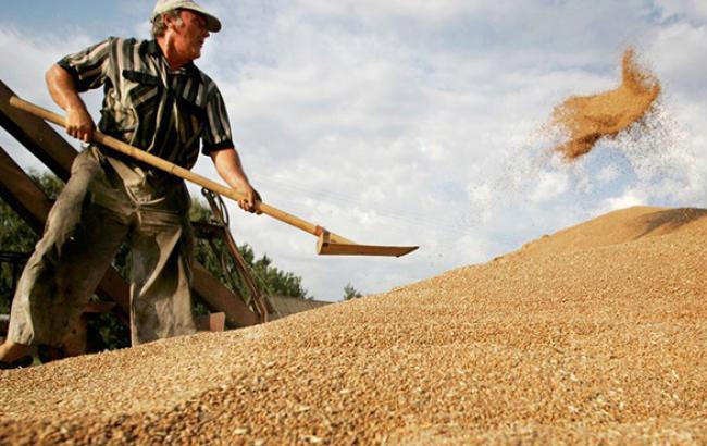 Бангладеш підписала контракт на поставки хлібних злаків з України