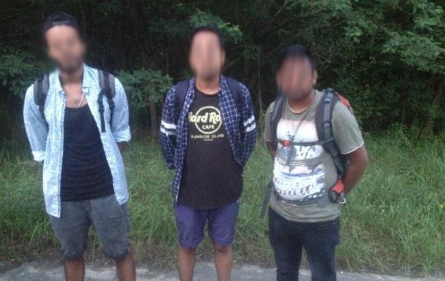 ГПСУ обнаружила группу нелегалов на границе с Польшей