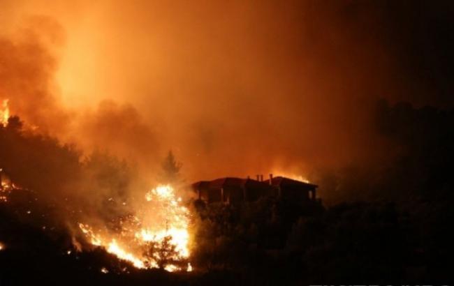Кількість загиблих від пожеж у Греції зросла до 94