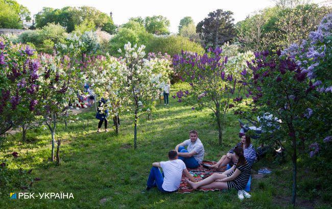 В Украину возвращается жара: прогноз погоды на выходные
